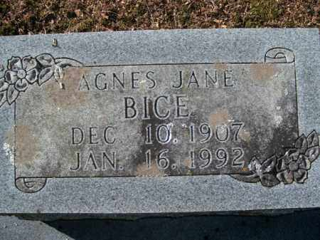 BICE, AGNES JANE - Boone County, Arkansas | AGNES JANE BICE - Arkansas Gravestone Photos