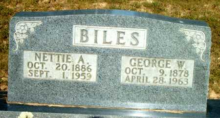 BILES, GEORGE W. - Boone County, Arkansas | GEORGE W. BILES - Arkansas Gravestone Photos