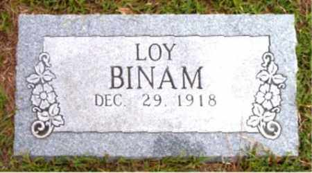 BINAM, LOY - Boone County, Arkansas | LOY BINAM - Arkansas Gravestone Photos