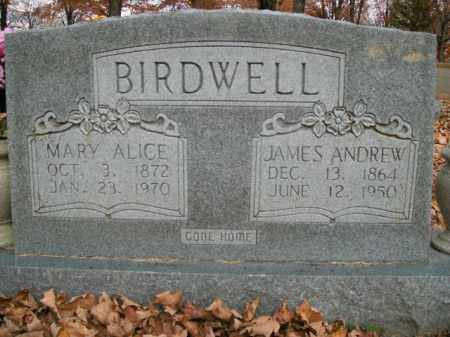 BIRDWELL, JAMES ANDREW - Boone County, Arkansas | JAMES ANDREW BIRDWELL - Arkansas Gravestone Photos