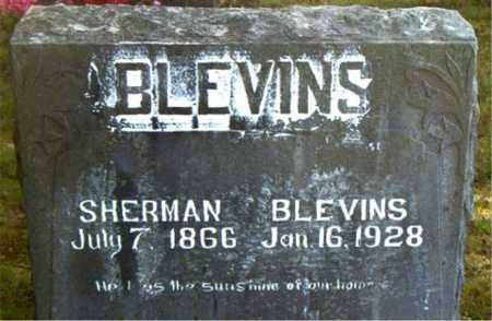 BLEVINS, SHERMAN - Boone County, Arkansas | SHERMAN BLEVINS - Arkansas Gravestone Photos