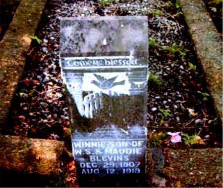 BLEVINS, WINNIE - Boone County, Arkansas | WINNIE BLEVINS - Arkansas Gravestone Photos
