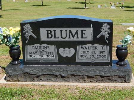 BLUME, WALTER T. - Boone County, Arkansas | WALTER T. BLUME - Arkansas Gravestone Photos