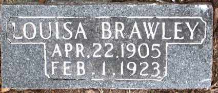 BRAWLEY, LOUISA - Boone County, Arkansas | LOUISA BRAWLEY - Arkansas Gravestone Photos