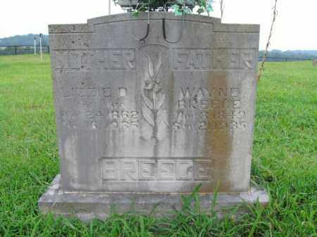 BREECE, LIZZIE D. - Boone County, Arkansas | LIZZIE D. BREECE - Arkansas Gravestone Photos