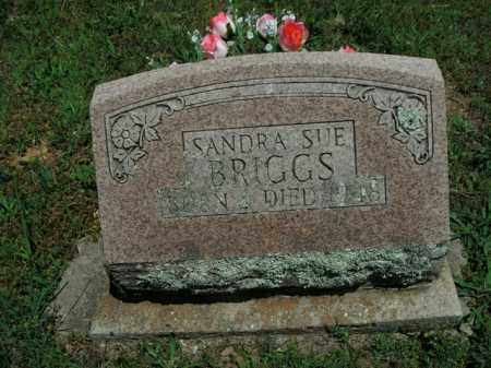BRIGGS, SANDRA SUE - Boone County, Arkansas | SANDRA SUE BRIGGS - Arkansas Gravestone Photos