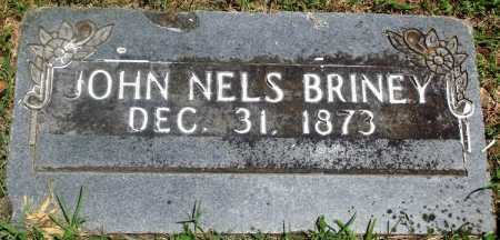 BRINEY, JOHN NELSON - Boone County, Arkansas | JOHN NELSON BRINEY - Arkansas Gravestone Photos