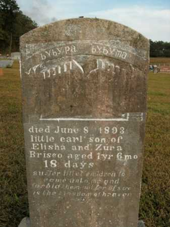 BRISCO, EARL - Boone County, Arkansas | EARL BRISCO - Arkansas Gravestone Photos