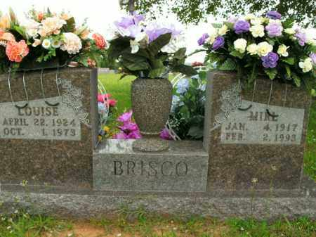 BRISCO, LOUISE - Boone County, Arkansas | LOUISE BRISCO - Arkansas Gravestone Photos