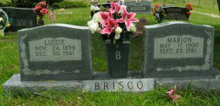 BRISCO, LIZZIE - Boone County, Arkansas | LIZZIE BRISCO - Arkansas Gravestone Photos
