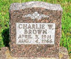 BROWN, CHARLIE W - Boone County, Arkansas | CHARLIE W BROWN - Arkansas Gravestone Photos