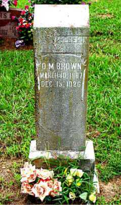 BROWN, O.M. - Boone County, Arkansas | O.M. BROWN - Arkansas Gravestone Photos