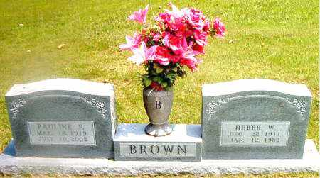 BROWN, PAULINE  FERN - Boone County, Arkansas | PAULINE  FERN BROWN - Arkansas Gravestone Photos