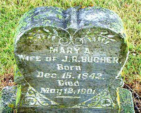 BUCHER, MARY A. - Boone County, Arkansas | MARY A. BUCHER - Arkansas Gravestone Photos