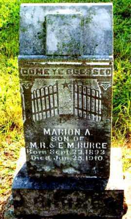 BURGE, MARION  A. - Boone County, Arkansas | MARION  A. BURGE - Arkansas Gravestone Photos