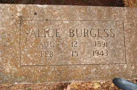 BURGESS, ALICE - Boone County, Arkansas | ALICE BURGESS - Arkansas Gravestone Photos