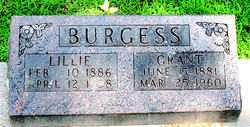 BURGESS, LILLIE M - Boone County, Arkansas | LILLIE M BURGESS - Arkansas Gravestone Photos