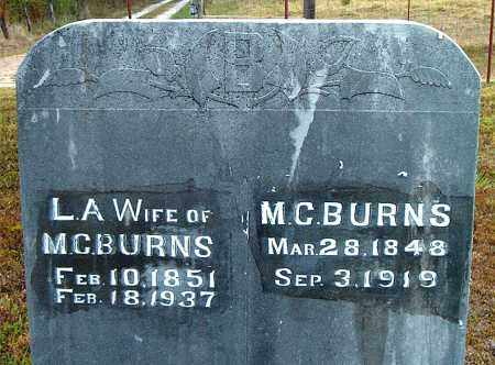BURNS, LIVONIA A. - Boone County, Arkansas | LIVONIA A. BURNS - Arkansas Gravestone Photos