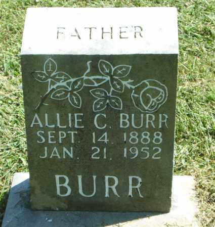 BURR, ALLIE CLAUDE - Boone County, Arkansas | ALLIE CLAUDE BURR - Arkansas Gravestone Photos