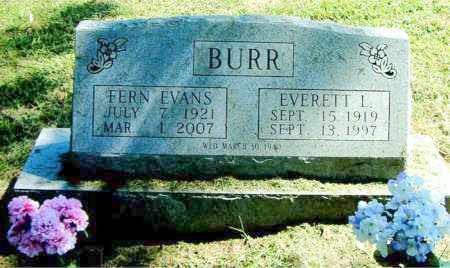 EVANS BURR, FERN - Boone County, Arkansas | FERN EVANS BURR - Arkansas Gravestone Photos