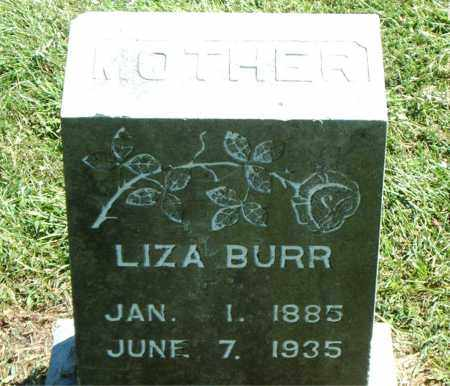 BURR, ELIZA JANE - Boone County, Arkansas | ELIZA JANE BURR - Arkansas Gravestone Photos