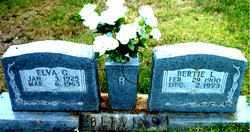 BURTON, ELVA GLADYS - Boone County, Arkansas | ELVA GLADYS BURTON - Arkansas Gravestone Photos