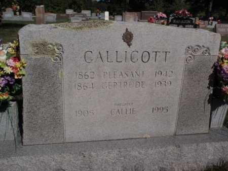 CALLICOTT, CALLIE - Boone County, Arkansas | CALLIE CALLICOTT - Arkansas Gravestone Photos