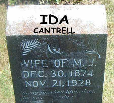 CANTRELL, IDA - Boone County, Arkansas | IDA CANTRELL - Arkansas Gravestone Photos
