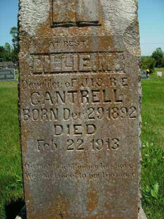 CANTRELL, LILLIE M. - Boone County, Arkansas | LILLIE M. CANTRELL - Arkansas Gravestone Photos
