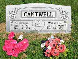 CANTWELL, C EVELYN - Boone County, Arkansas | C EVELYN CANTWELL - Arkansas Gravestone Photos