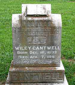 CANTWELL, WILEY - Boone County, Arkansas | WILEY CANTWELL - Arkansas Gravestone Photos