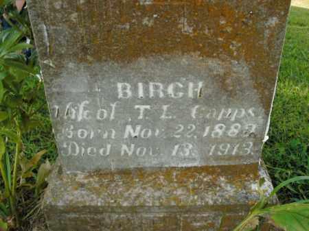 CAPPS, BIRCH - Boone County, Arkansas | BIRCH CAPPS - Arkansas Gravestone Photos