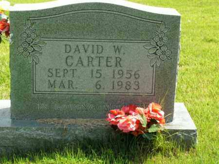 CARTER, DAVID WAYNE - Boone County, Arkansas | DAVID WAYNE CARTER - Arkansas Gravestone Photos