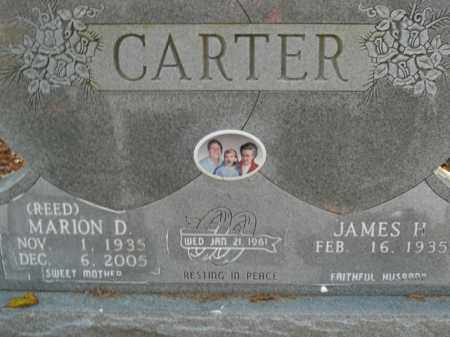 REED CARTER, MARION D. - Boone County, Arkansas | MARION D. REED CARTER - Arkansas Gravestone Photos