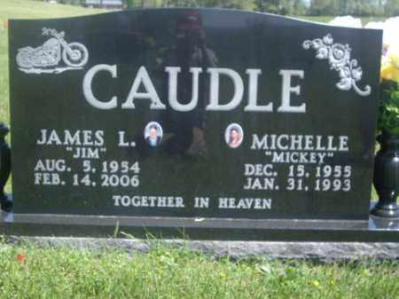 "CAUDLE, MICHELLE ""MICKEY"" - Boone County, Arkansas 