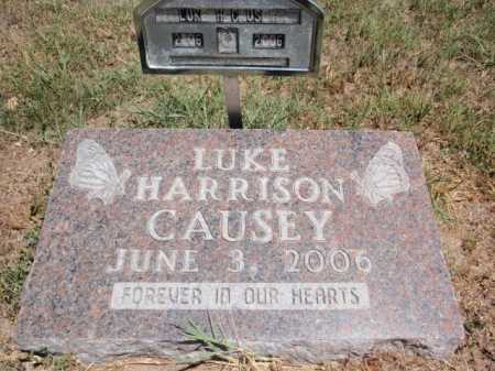 CAUSEY, LUKE HARRISON - Boone County, Arkansas | LUKE HARRISON CAUSEY - Arkansas Gravestone Photos