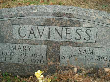 CAVINESS, SAM - Boone County, Arkansas | SAM CAVINESS - Arkansas Gravestone Photos