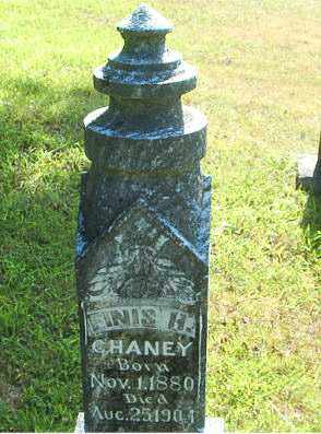 CHANEY, FINIS H. - Boone County, Arkansas | FINIS H. CHANEY - Arkansas Gravestone Photos
