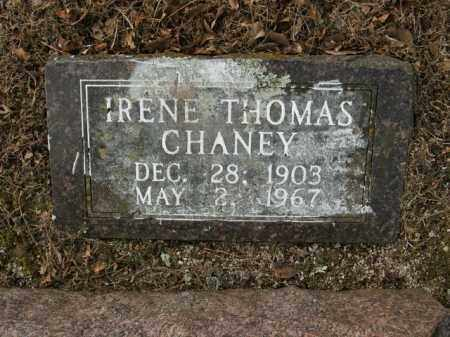 CHANEY, IRENE - Boone County, Arkansas | IRENE CHANEY - Arkansas Gravestone Photos