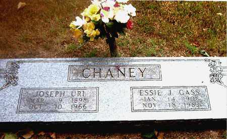 CHANEY, JOSEPH   URI - Boone County, Arkansas | JOSEPH   URI CHANEY - Arkansas Gravestone Photos