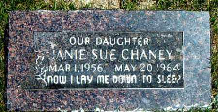 CHANEY, JANIE SUE - Boone County, Arkansas | JANIE SUE CHANEY - Arkansas Gravestone Photos