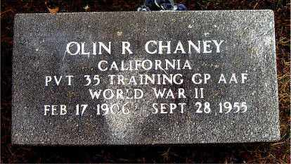 CHANEY  (VETERAN WWII), OLIN  R - Boone County, Arkansas | OLIN  R CHANEY  (VETERAN WWII) - Arkansas Gravestone Photos