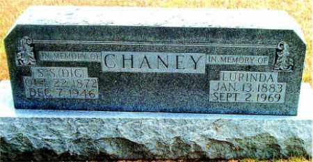 CHANEY, LURINDA - Boone County, Arkansas | LURINDA CHANEY - Arkansas Gravestone Photos