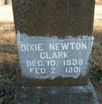 NEWTON CLARK, DIXIE - Boone County, Arkansas | DIXIE NEWTON CLARK - Arkansas Gravestone Photos