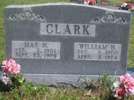 CLARK, MAE N - Boone County, Arkansas | MAE N CLARK - Arkansas Gravestone Photos