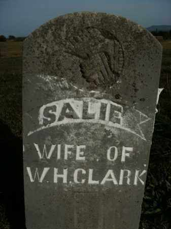 CLARK, SALIE - Boone County, Arkansas | SALIE CLARK - Arkansas Gravestone Photos