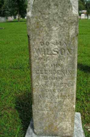 CLENDENIN, DOSHA - Boone County, Arkansas | DOSHA CLENDENIN - Arkansas Gravestone Photos