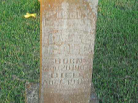 COLE, DELL - Boone County, Arkansas | DELL COLE - Arkansas Gravestone Photos
