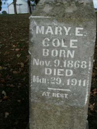 COLE, MARY E. - Boone County, Arkansas | MARY E. COLE - Arkansas Gravestone Photos