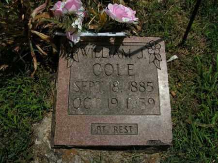 COLE, WILLIAM J. - Boone County, Arkansas | WILLIAM J. COLE - Arkansas Gravestone Photos